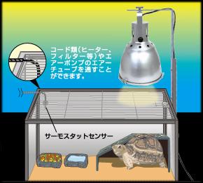 Vivaria ワイヤーカバー 使用例