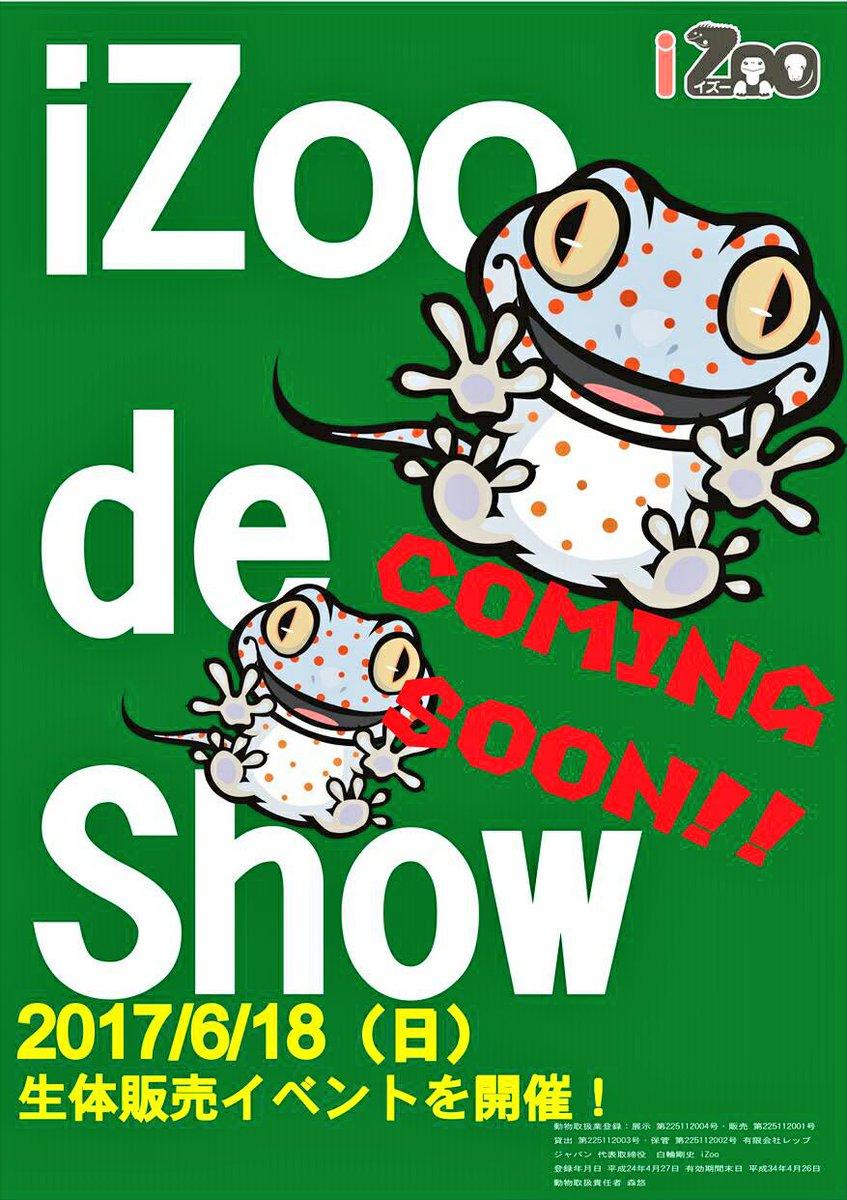 iZoo de Show (イズーデショー)