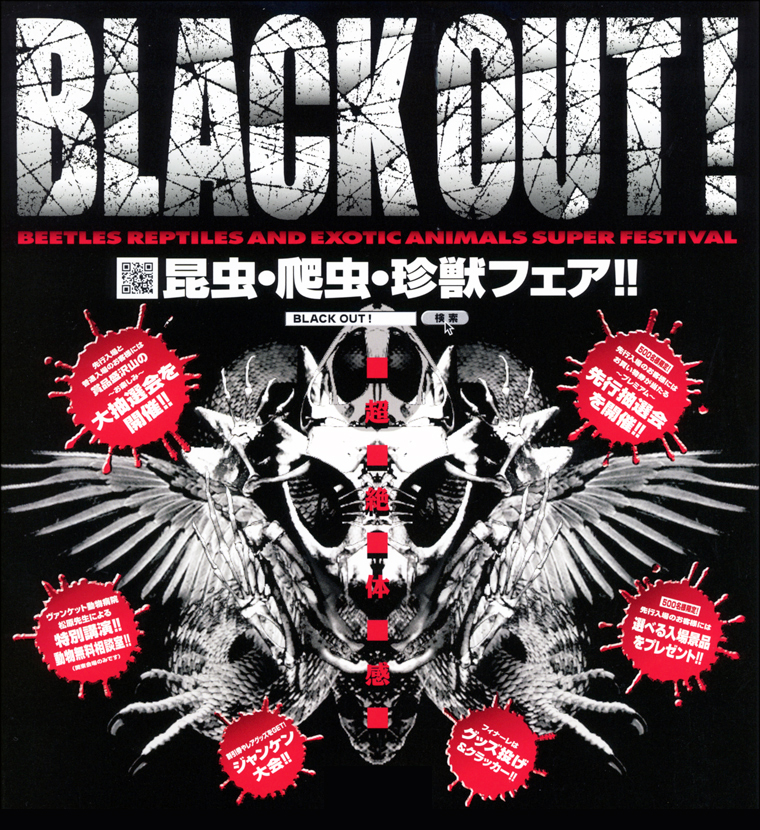 BLACK OUT! 京都