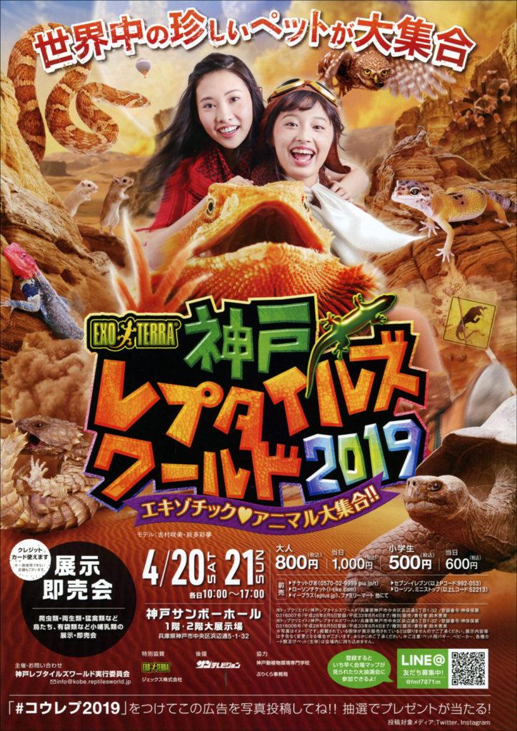 神戸レプタイルズワールド2019