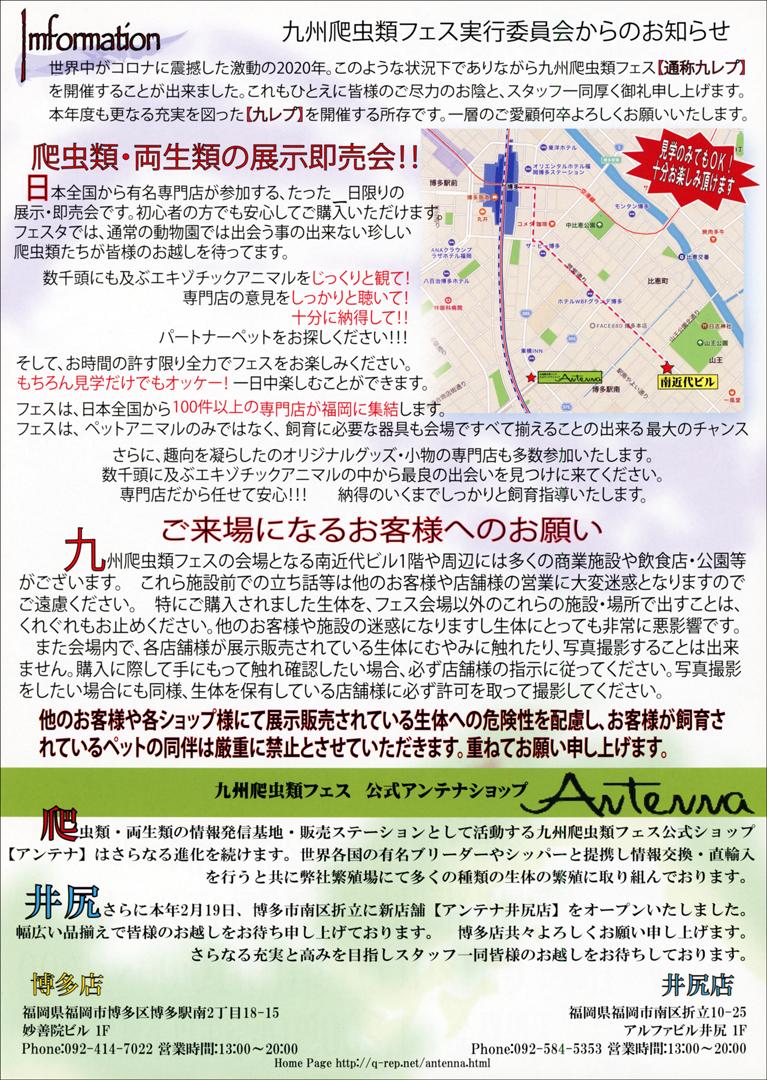 九州爬虫類フェス2021 (九レプ) ビラ裏面