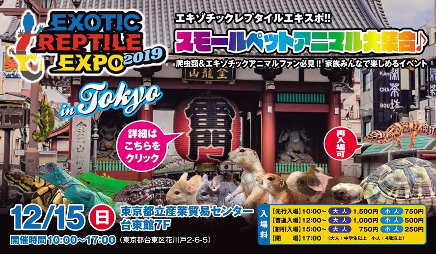 エキゾチックレプタイルエキスポ in 東京 2019