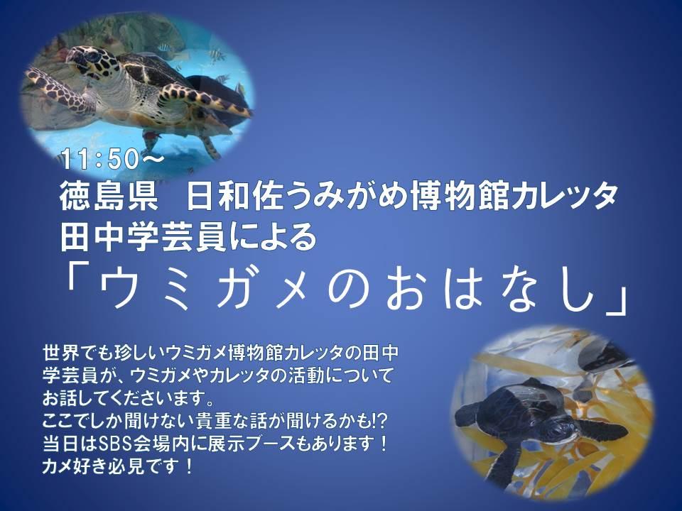 四国ブリーダーズストリートスプリング SBSスプリング ウミガメのおはなし