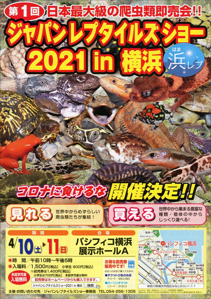 ジャパンレプタイルズショー2021 in 横浜 (浜レプ)