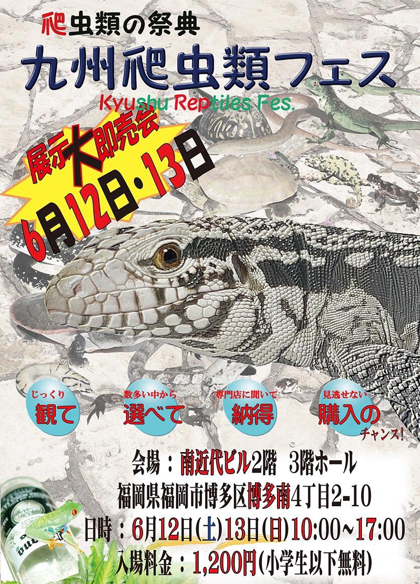 九州爬虫類フェス2021 (九レプ)